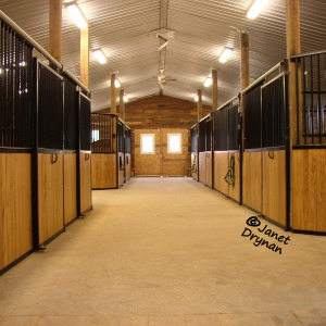 Inside our Barn